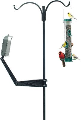 Camp and Hike Set up your Birdcam for the best pictures by mounting it on any bird-feeder pole with an outside diameter of .5 to 1.5, or to any post, wall or tree. The camera mounts elbow joint adjusts the mounting arm to multiple angles to capture perfect pictures. The ball joint on the mounting arm connects to the Birdcams standard tripod mount, allowing you to swivel the camera 360. The mounting arm is easy to operate and requires no tools for installation. - $14.88