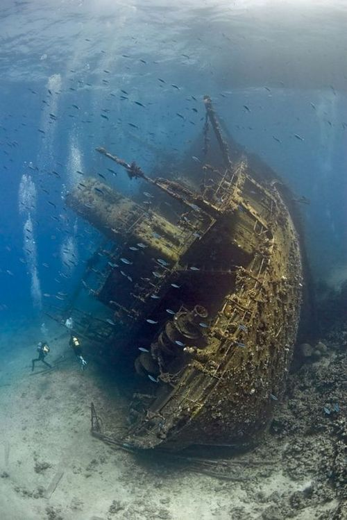 Scuba WHAT AN INCREDIBLE SHOT! TAKE ME HERE! WHERE IS THIS? I WANT TO DIVE THIS WRECK! LOOK AT THE VIZ!