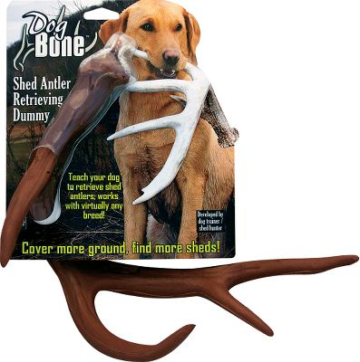 Hunting Patent-pending antler-shaped retrieving tool allows you to train your dog to hunt for and retrieve shed antlers. Made of soft, yet durable foam, this dummy is a safe, positive and enjoyable introduction to the antler shape for pups and young dogs with sensitive, smaller muzzles, eyes and noses. Brown dummy is a great transition tool from visual to covered scent retrieval. Colors: White, Brown. Color: White. Type: Shed Antler Training. - $24.99