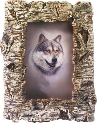 Entertainment Add outdoor-inspired atmosphere to your home or cabin with these realistic looking birch-bark frames. Poly-resin craftsmanship is hand-painted for added detail. Vertical display with easel back. Glass insert. Photo size: 4 x 6. Height: 8-1/2. - $14.88