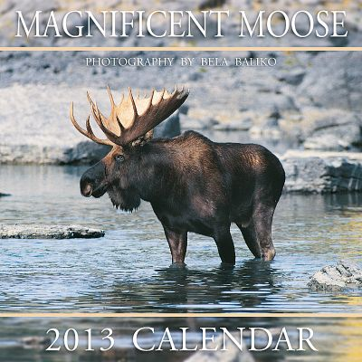 Hunting Taken by wildlife photographer Bela Baliko, these photos capture a variety of moose. Printed with vegetable-based inks and a water-based, high-gloss cover finish, calendars are environmentally friendly and fully recyclable. 12L x 12H. - $3.24