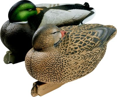 "Hunting Decoy-shy birds key in on signs of safety in the places where they want to land. Nothing says ""all is well"" better than these realistic sleeping mallard decoys. The full sleeping pose brings a sense of serenity to your spread. One look from suspicious ducks will convince them to lock and land. These will be the key decoys when it comes to adding the final touches of realism to your spread. Per two. Comes with one drake and one hen. - $19.99"