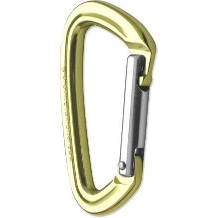 Climbing The Black Diamond Positron Straight Gate carabiner delivers the antisnag benefits of a keylock nose at an affordable price. - $7.95