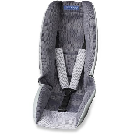 Fitness Jog and stroll with your infant cradled in the Burley Baby Snuggler(TM). This liner securely holds and adjusts to fit infants 3 - 12 months of age. - $50.83