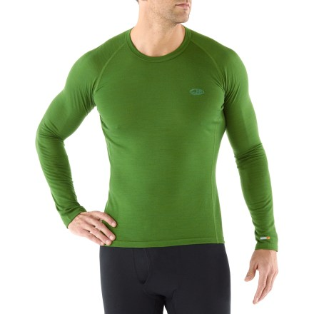Camp and Hike The Bodyfit 200 Oasis underwear crew top from Icebreaker has great versatility, taking you from mountain biking, hiking to spring skiing. - $44.93