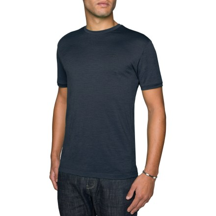 With the feel of lightweight cotton and the performance of pure merino wool, the Icebreaker Tech T Lite is the ideal piece for active adventures. - $31.83