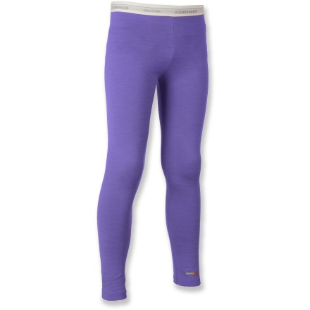 Camp and Hike The Icebreaker Bodyfit 200 merino wool leggings are an essential layer of clothing for cold days of biking, hiking, snow sports and everyday use. - $24.83