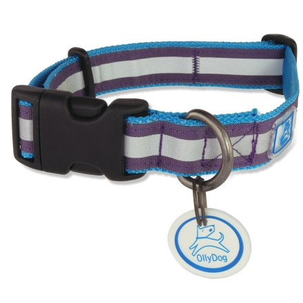 Camp and Hike The OllyDog Nightlife II dog collar sports colorful daytime style with reflective detailing for nighttime protection. - $6.83