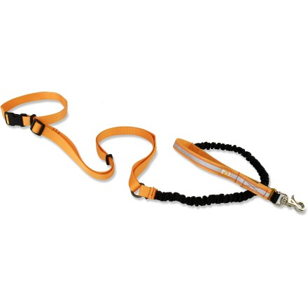 Fitness The OllyDog Mt. Tam hands-free dog leash is perfect for active dog lovers who like to run hands-free or carry something besides the leash. - $27.00