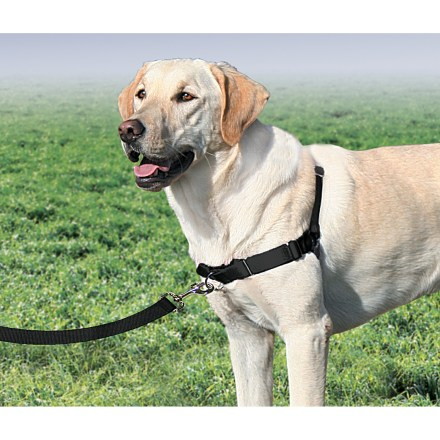 Camp and Hike The Premier Easy Walk dog harness gently discourages your dog from pulling on its leash. It's easy to fit, easy to use and requires almost no special technique or acclimation time. - $17.93