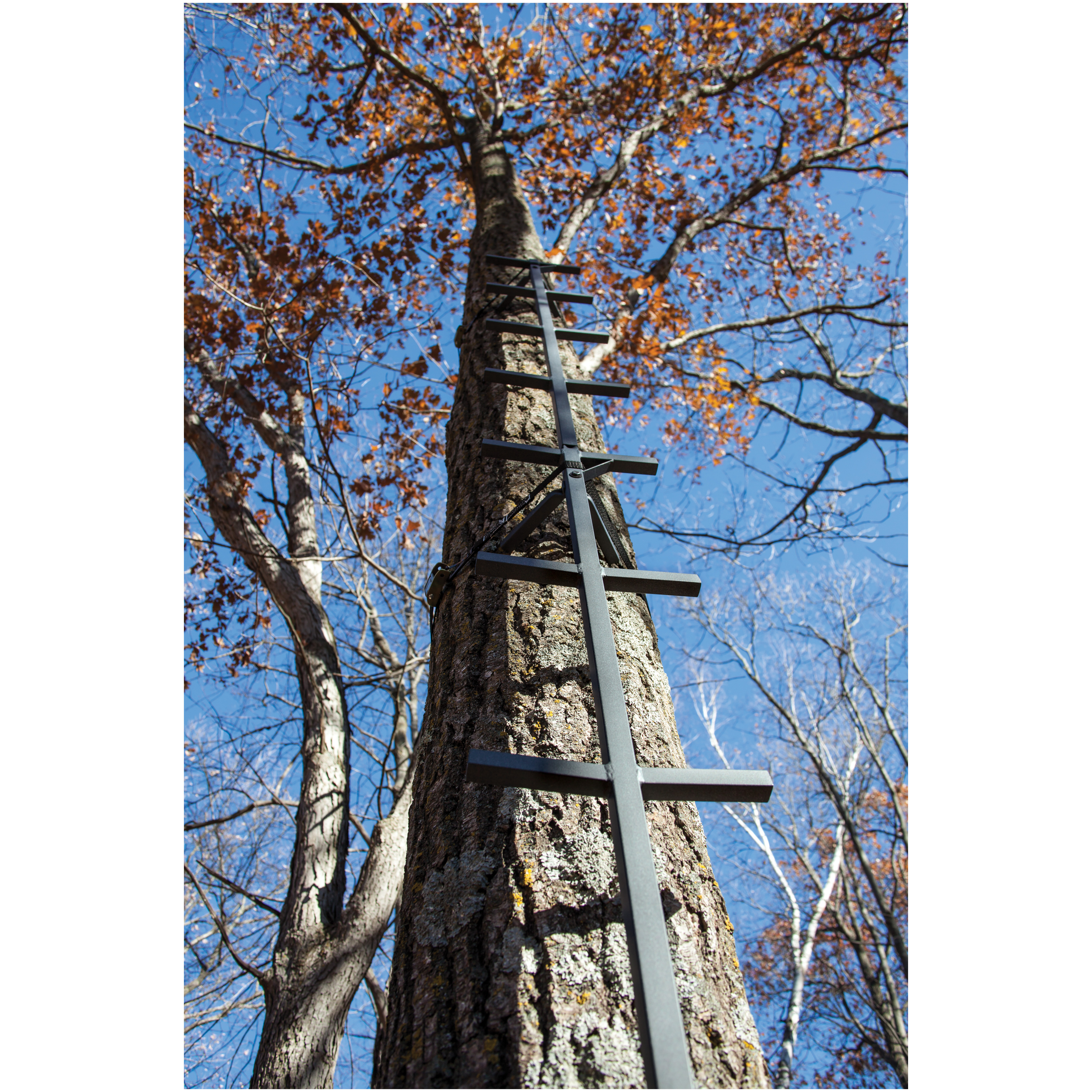 "Rivers Edge 20' Connect-N-Climb Climbing Stick. Quickly climb into your hang-on tree stand! Quick access to your hang-on tree stand! Easily climb into your tree stand with this 20' Connect-N-Climb Climbing stick. Fully connected and offers 20' of climbing height. Constructed of metal with a non-slip coating so you can rest assured climbing into your tree stand will be safe, easy and secure. Features:Compact and easy to transport 2 steps at each level for easy climbing Non-slip coating on each step for safety 300-lb. weight capacity 11"" step width 15"" distance between each step for safe climbing Measures 20' h. overall, weighs 22 lbs. - $99.99"