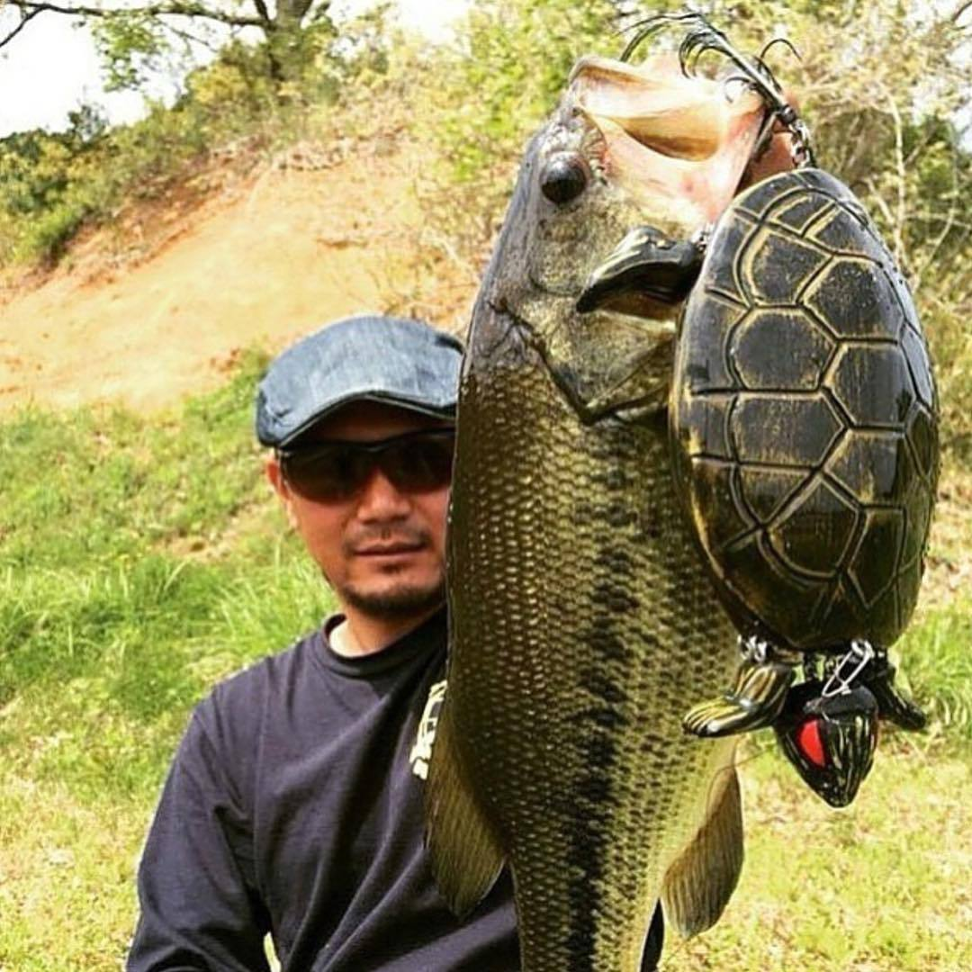 Giant turtle lure slaying the bass - Thrill On