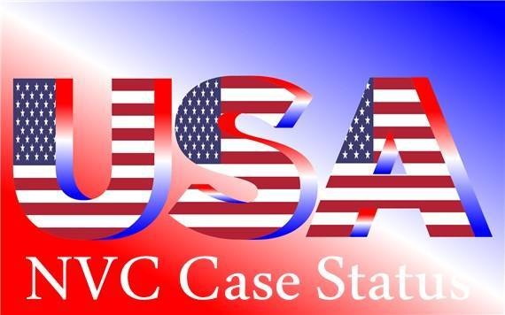 How to Check NVC Case Status online - Thrill On