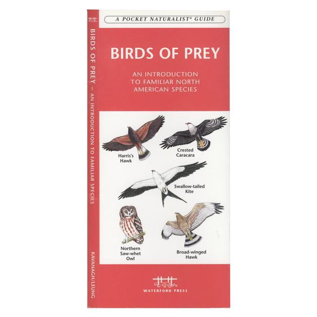 What distinguishes a bird of prey? They have exceptionally good vision, a sharp, hooked beak, and powerful feet with curved, sharp talons. Birds of Prey is the perfect pocket-sized, folding guide for the raptor lover and nature enthusiast. This beautifully illustrated guide highlights almost all North American species perching and in flight. Created and printed in the USA, this guide highlights raptor flyways and migratory hotspots.  Laminated for durability, this handy reference is a great source of portable information and ideal for field use by novices and experts alike. - $6.95