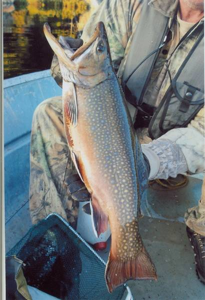 Fishing Quebec Brook Trout
