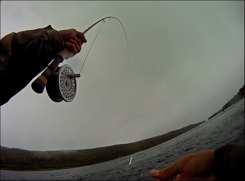 Flyfishing Pinware River in Labrador
