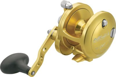 Fishing American-made quality and craftsmanship with high-speed models that pull in 30 of line per crank. Stainless steel components and a dry drag offer saltwater-resistant durability. Exclusive Magnetic Cast Control prevents backlashes and adjusts for handling a wide range of artificials and live bait. Easy-to-adjust Lever Drag control system. Oversized handle knob. Made in USA. Available: Gold, Silver. Color: Stainless Steel. Type: Saltwater Casting Reels. - $239.99