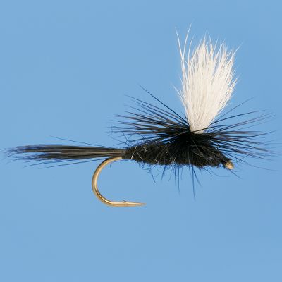Flyfishing Black Gnats are a good fly to have in your box to cover many situations. They imitate darker bodied mayflies, midges, or even ants. The addition of parachute hackle makes them more visible to the angler and gives the appearance of a wing. Per 3. Sizes: 12, 14, 16, 18. Color: Black. Type: Dry Flies. - $4.49