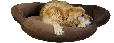 Hunting Lush microfiber from top to bottom provides the ultimate in luxury for your pet. Perfect for the pet who likes to curl up and snooze the day away. High-loft polyester fill keeps pets warm and cozy and off cold floors. The zippered, removable cover is easy to remove and machine washable. 100% polyester. Imported. Sizes: S(35 ), M(42 ), L(50 ). Colors: Sage, Brown, Caramel, Moss, Blue. Size: SMALL. Color: Brown. Type: Dog Beds. - $69.99